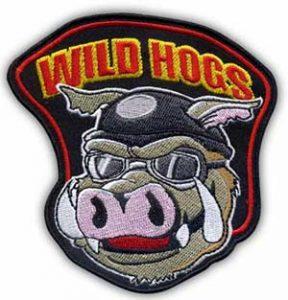 wild hogs nasivka